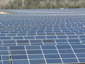 solar-field
